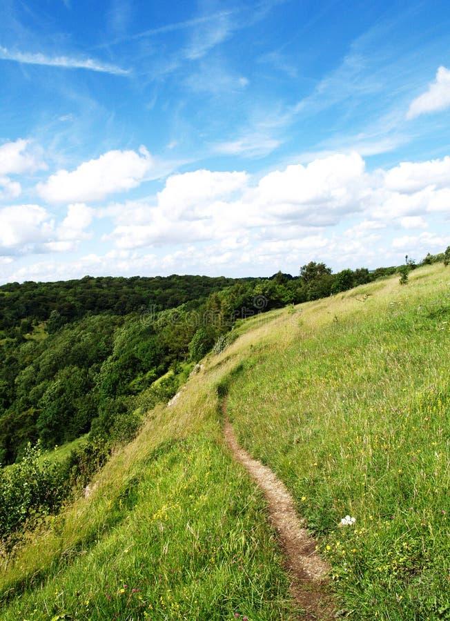 pola zielone niebo niebieskie zdjęcia stock