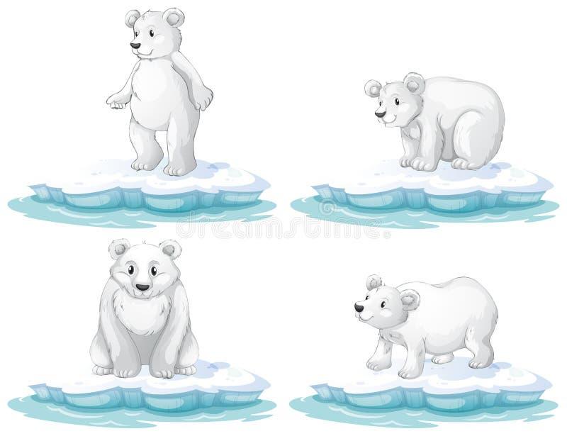 Polaire Bear royalty-vrije illustratie
