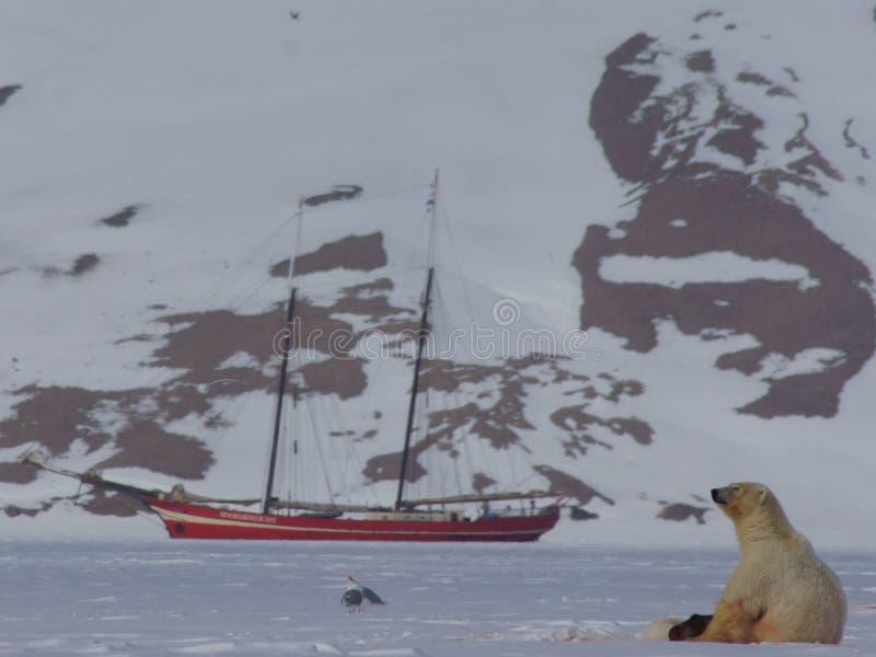 Polaire concernez la glace de mer avec le bateau et la montagne image libre de droits