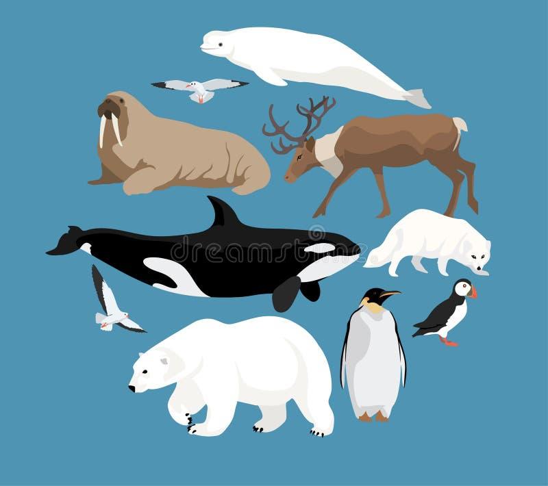 Polaire diereninzameling vector illustratie