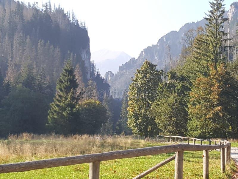 Poland, Malopolska, Tatra mountains - the Koscieliska valley. stock image