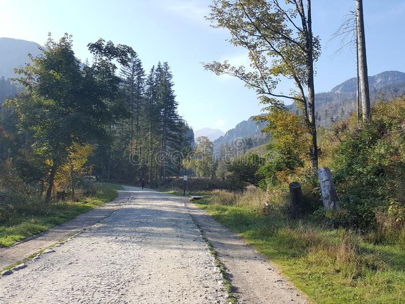 Poland, Malopolska, Tatra mountains - the Koscieliska valley. stock photography