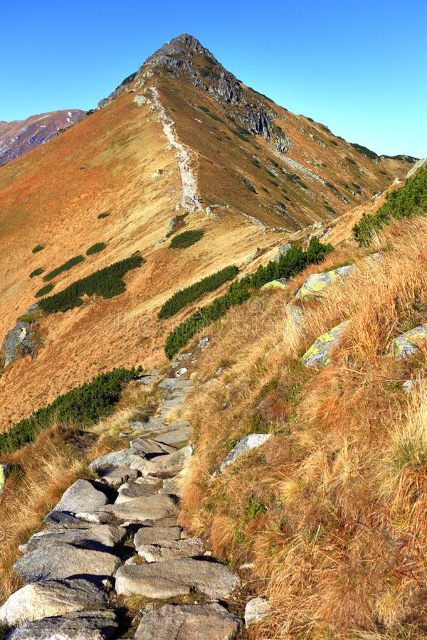 Panoramic view of Tatra Mountains in Lesser Poland - Western Tat. Poland, Tatra Mountains, Zakopane - Goryczkowa Swinska Pass, Goryczkowa Czuba and Czerwone royalty free stock photo