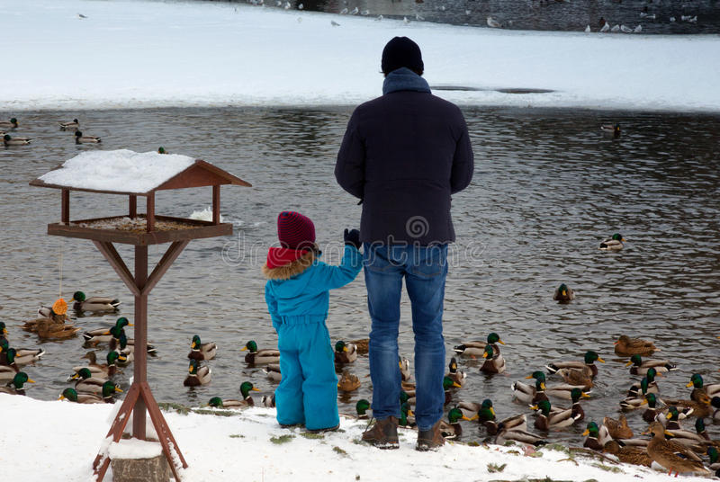 Poland-Warsaw,2016.Dad with his daughter feeding ducks in park i stock photos
