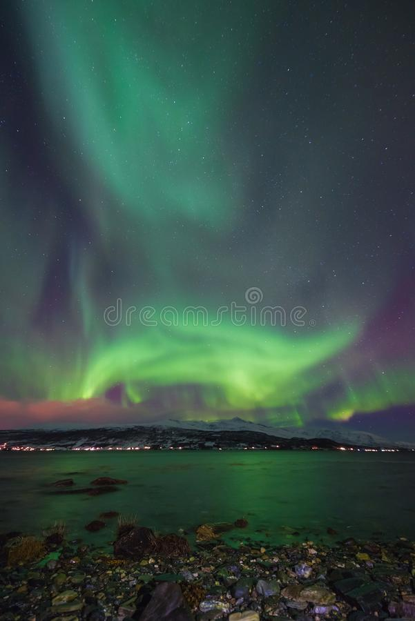 Polar arctic Northern lights aurora borealis sky star in Scandinavia Norway Tromso in the farm winter snow mountains stock image