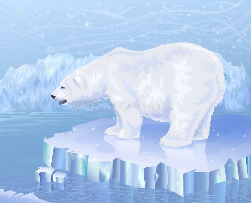 Polar bear. Standing on an ice floe