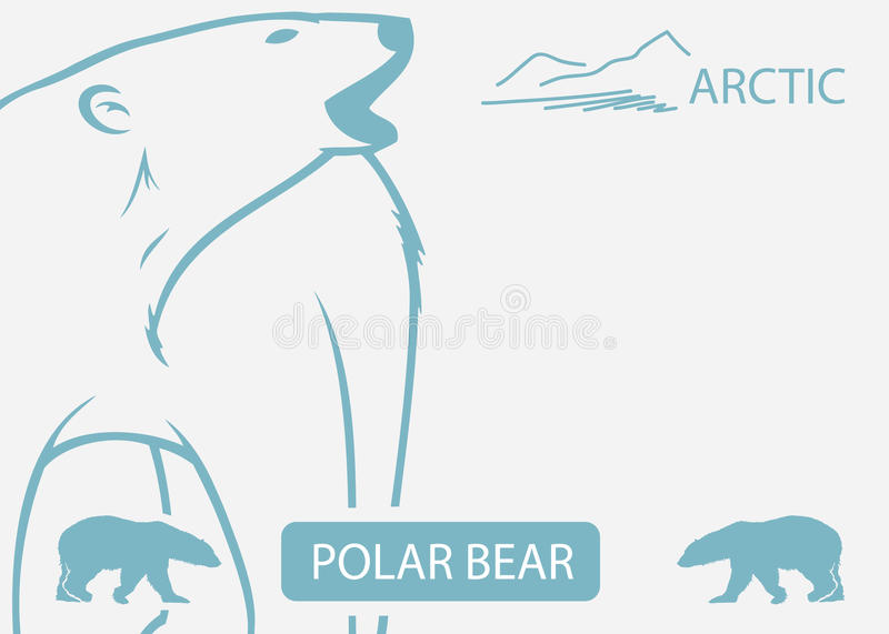 Download Polar bear background stock image. Image of outdoors - 26596455