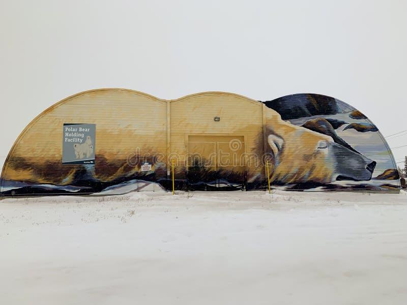 Polar Bear Holding Mural foto de stock