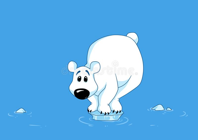 polar bear ice melting north pole animal stock