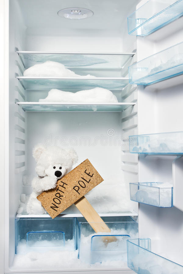 Polar bear in refrigerator with North Pole sign. stock photo