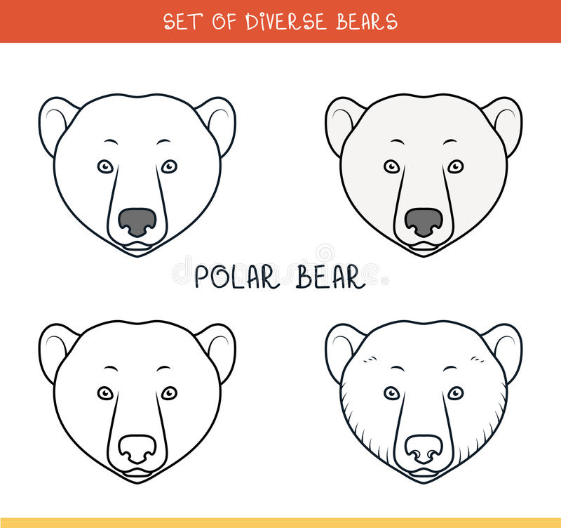 Polar Bear. Set Face, Heads Bear In Color, Lines Stock Vector ...
