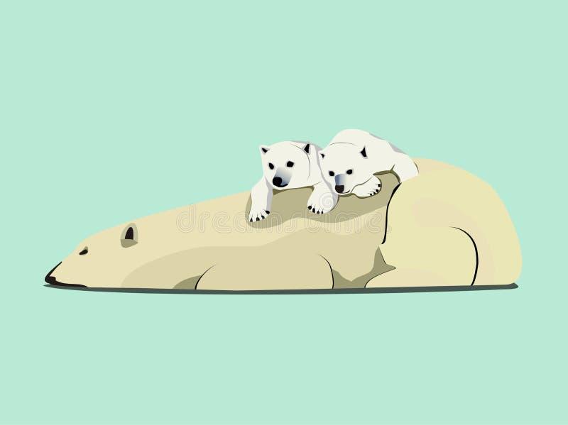 polar björnlook royaltyfri illustrationer