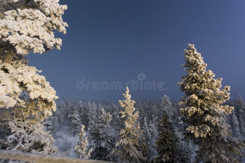 Polar night in Finland. At Saariselka royalty free stock photo