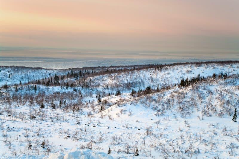 Polar night in tundra. Polar night in mountains in northern tundra. Kola peninsula, Russia stock photography