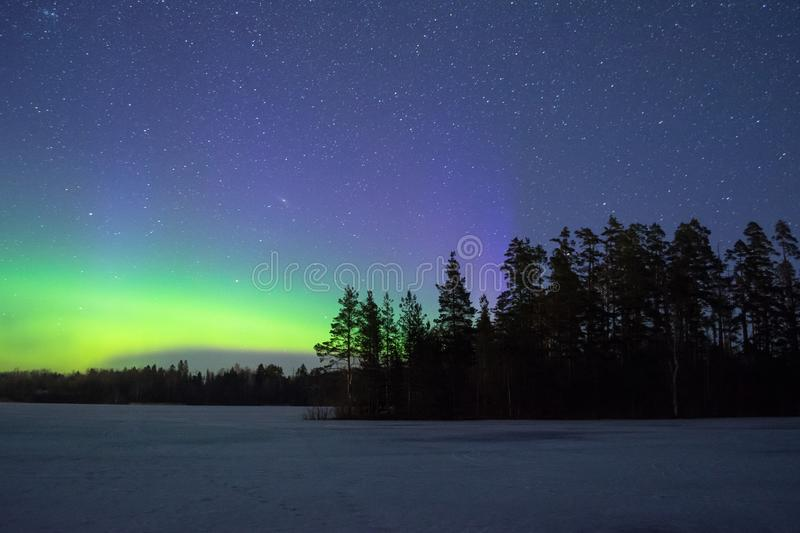 Polar northen lights aurora borealis at night in the starry sky above the lake with the island and the silhouette trees by the for. Polar northen lights aurora royalty free stock photo