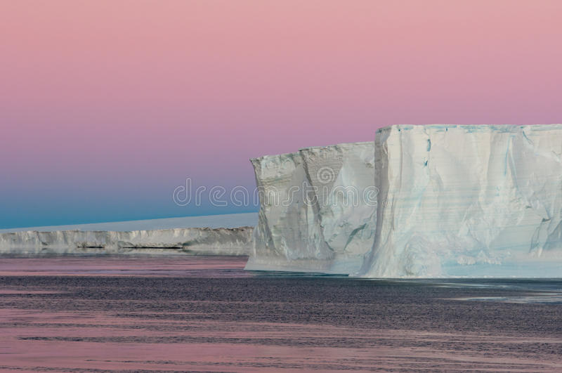 Polar purple stock photo