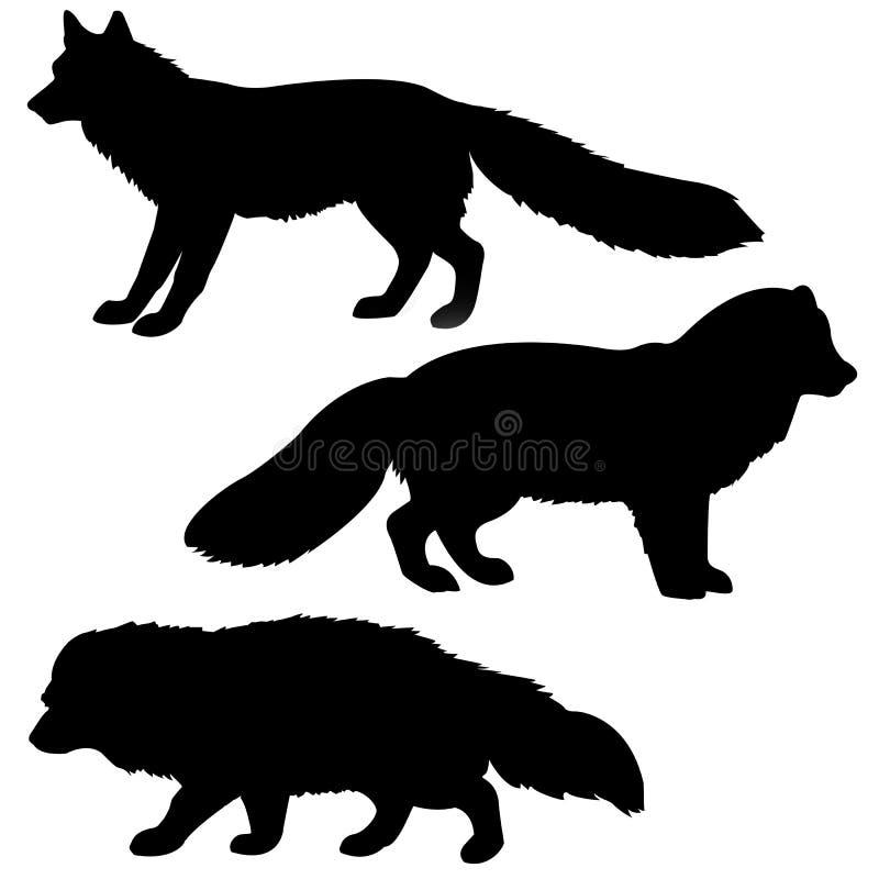 polar silhouette för bäverskinnräv vektor illustrationer