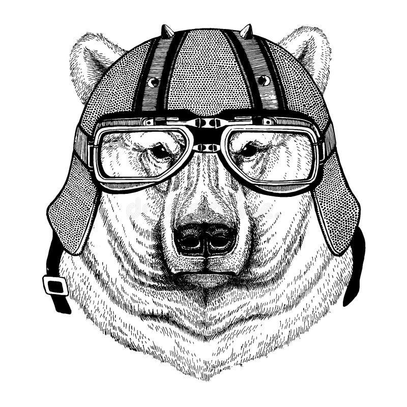 Polar vit björn som bär en motorcykel, aero hjälm Utdragen bild för hand för tatueringen, t-skjorta, emblem, emblem, logo, lapp royaltyfri illustrationer