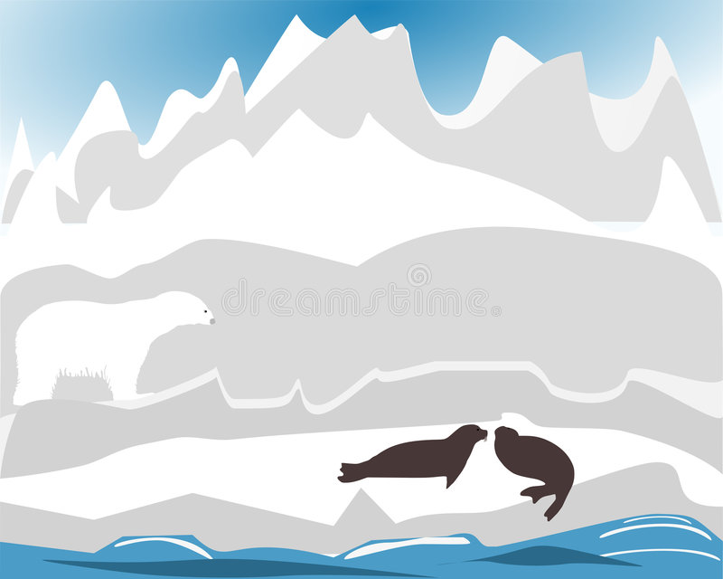 Polarbear Hunting For Seal Stock Photo