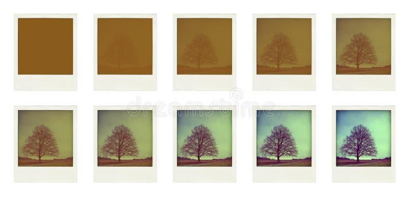 polaroïd photographie stock