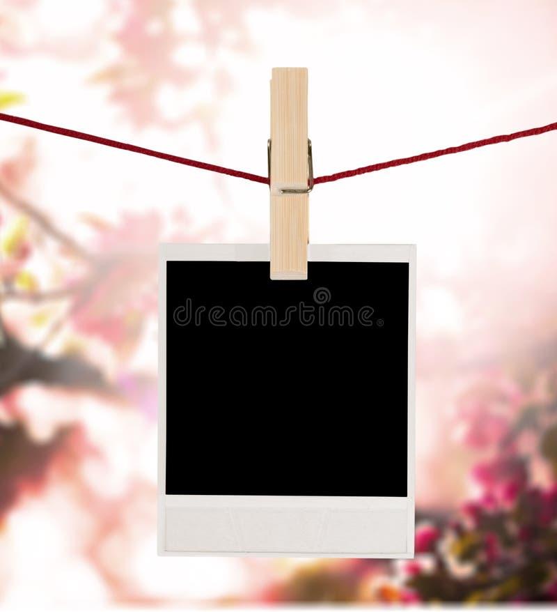 polaroid stock fotografie