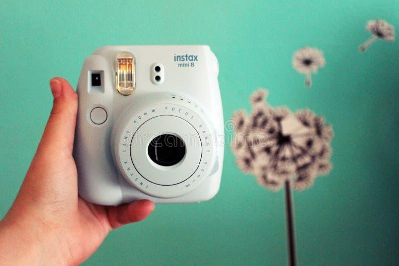 polaroid στοκ φωτογραφία με δικαίωμα ελεύθερης χρήσης