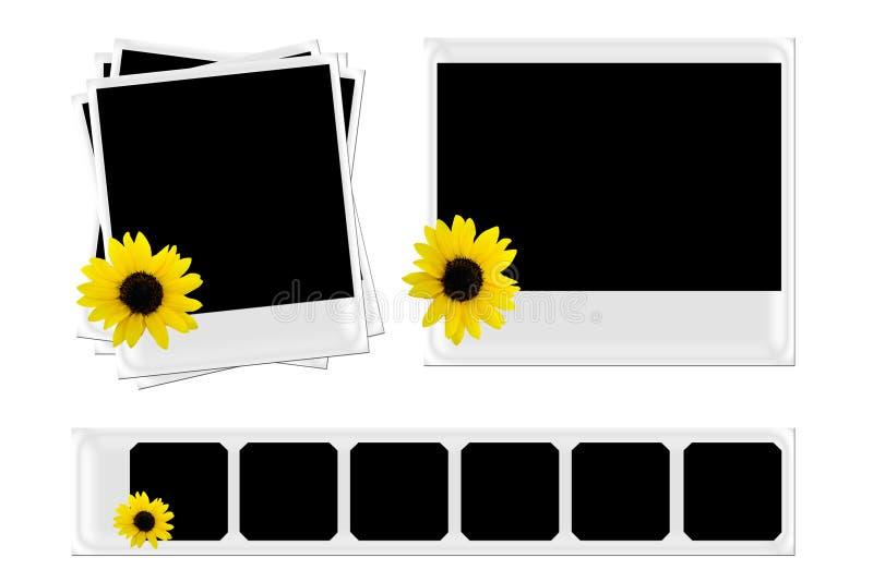 Polaroid com girassol ilustração stock