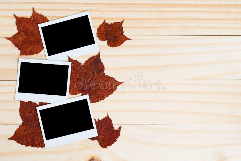 Polaroid- foto's en esdoornbladeren op houten plank royalty-vrije stock fotografie
