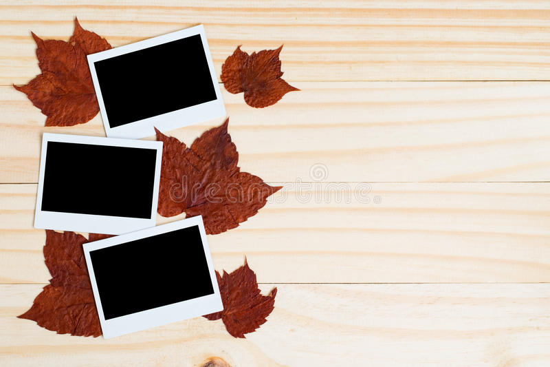 Polaroid Fotos und Ahornblätter auf hölzerner Planke lizenzfreie stockfotografie