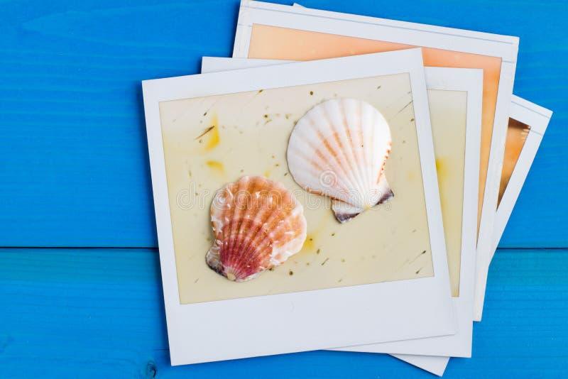 Polaroid- Kader en Zeeschelp stock afbeelding