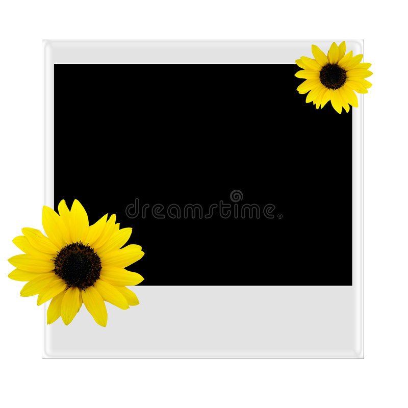 Polaroidcamera met zonnebloem royalty-vrije stock fotografie