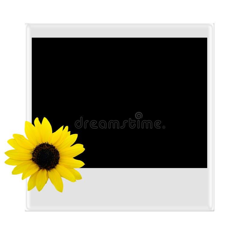 Polaroidcamera met zonnebloem royalty-vrije stock afbeelding