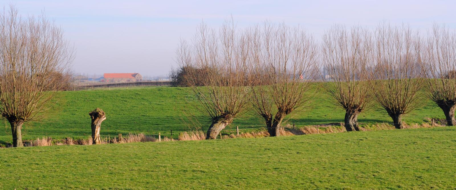 Polder royalty free stock images