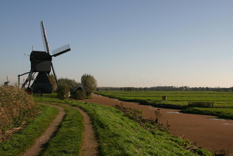 Poldermodel olandese immagini stock