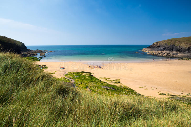 Poldhu liten vik Cornwall England arkivbild