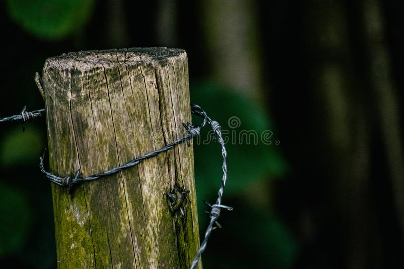 Pole with Barbed wire royalty free stock photo