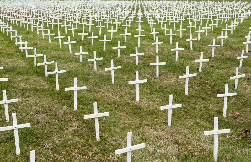 Pole biali krzyże obrazy stock