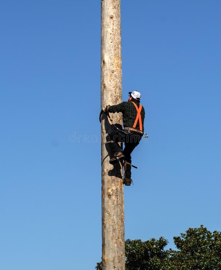 Pole Climbing Competition stock photos