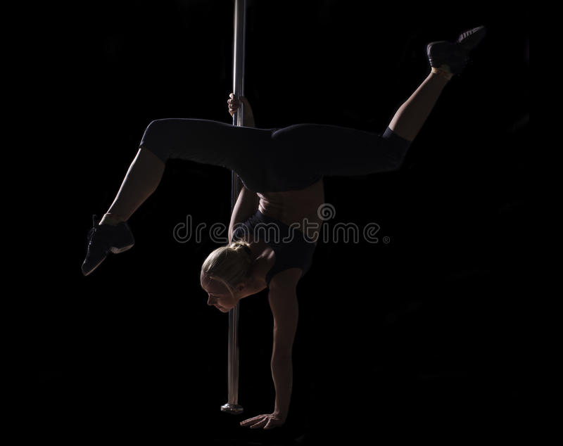 Download Pole dancer stock photo. Image of erotic, babe, girl - 22065824