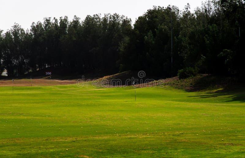 Pole golfowe zakrywający z grać w golfa piłki obraz royalty free