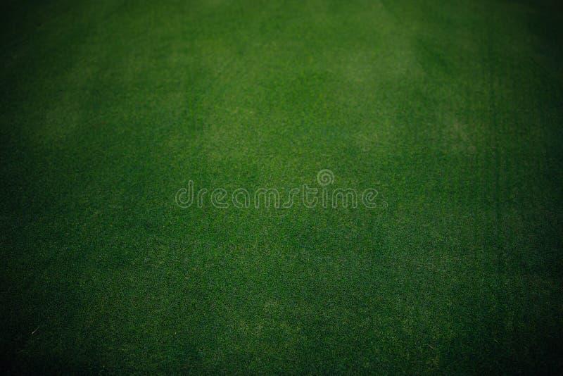 Pole golfowe zielonej trawy tekstura fotografia royalty free