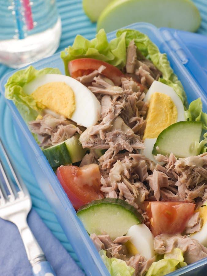 pole lunch sałatkę z tuńczyka obraz stock