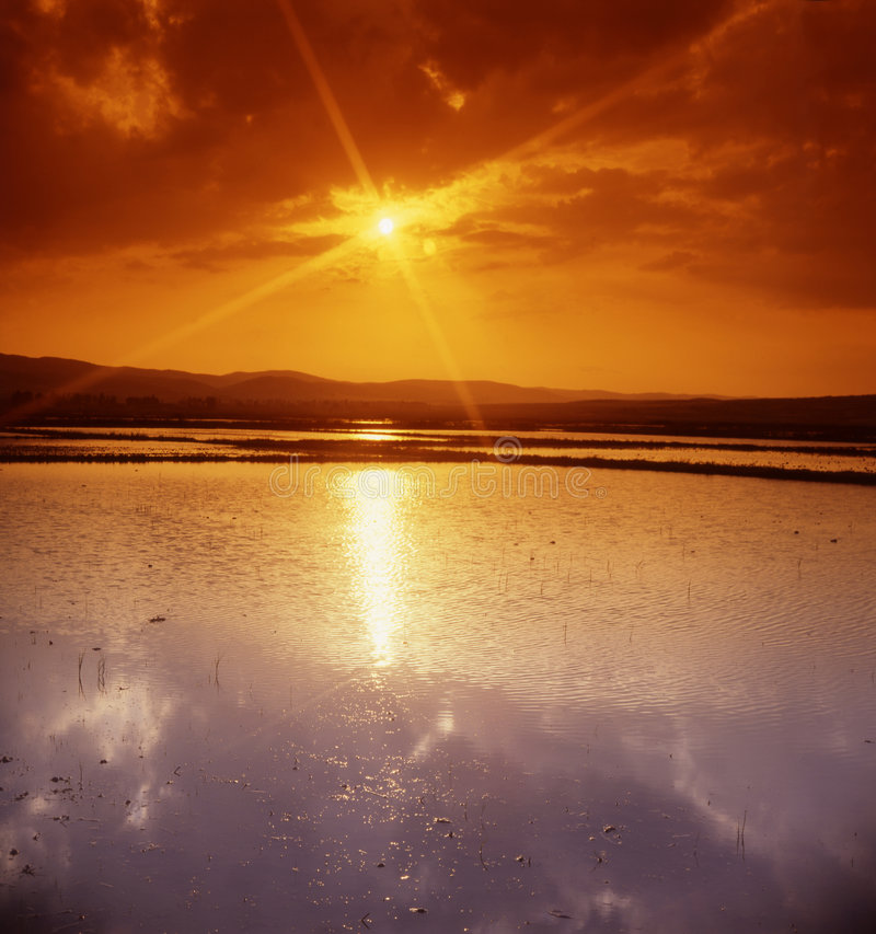 pole w wysokości słońca fotografia royalty free