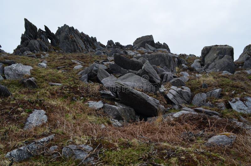 Pole wypełniał z wielkimi czarnymi skałami w Irlandia obraz royalty free