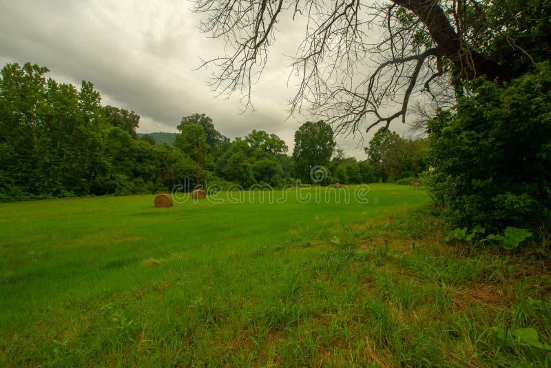 Pole z siano rolkami na Chmurnym dniu w górach zdjęcie stock