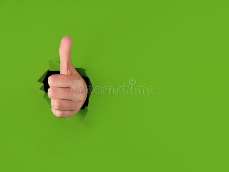 Polegares que perfuram acima através do papel verde fotos de stock royalty free