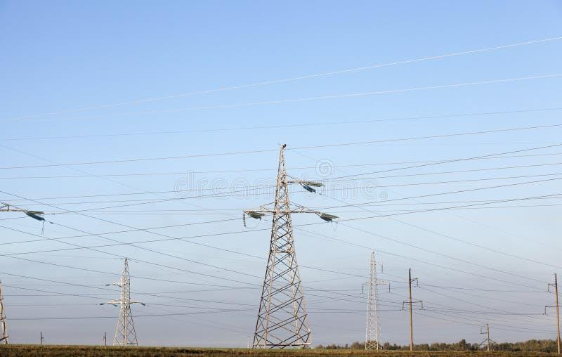 Polen met hoog voltage, close-up stock foto