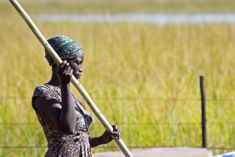 Poler de Mokoro photographie stock libre de droits