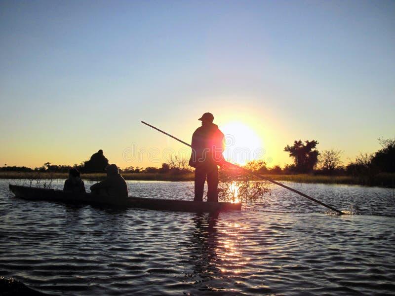Poler sur le delta d'Okavango images libres de droits