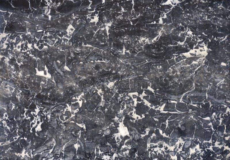 polerad textur för marmor arkivbild